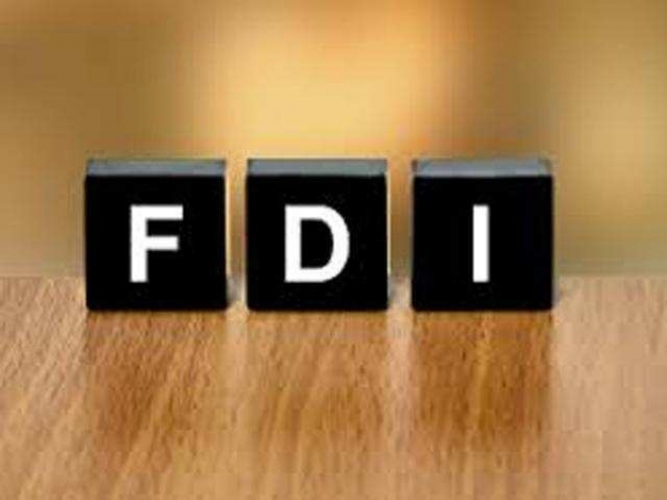 New FDI strategy much needed to build resilient economy